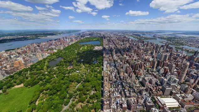 La quiete di New York. Anche Natale