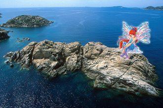 Le magie del mare