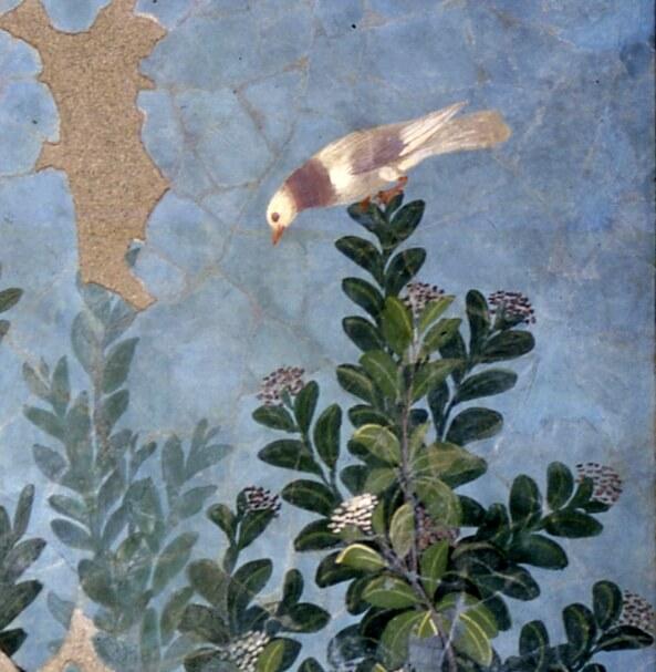 L'Antico Egitto? Lo trovi a Torino, Napoli e Pompei