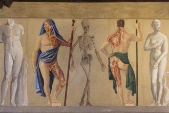 Lo scheletro svelato. Benvenuti al MUSME