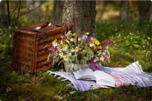 L'arte del picnic